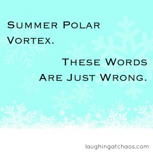 Summer-polar-vortex